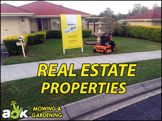 1 – Redbank Plains Ipswich Queensland – Ride On – Ray White Real Estate – AOK Mowing