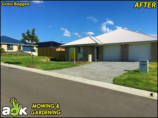 7-1-Collingwood-Park-Ipswich-Queensland-Lawn-Mowing-Ray-White-Real-Estate-AOK-Mowing